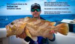 Deep Drop Fishing Pt05 – Radiant Cod