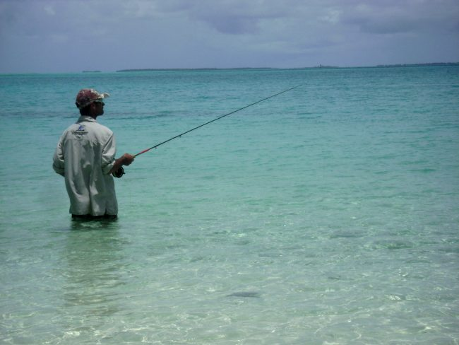 Wading Cocos Island flats for Bonefish