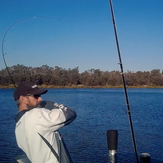 Nick Hocking Battles 38cm Black Bream