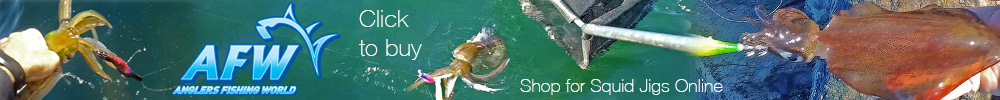 Buy Squid Jigs