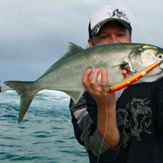 Steve Correia with a Tailor caught offshore of Fremantle