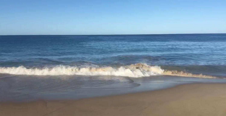 Berley Slick on Preston Beach