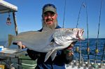 Article – Mulloway on Metal